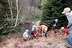 Here you see scouts from the Harrison Boy Scout Troop planting trees at site C.